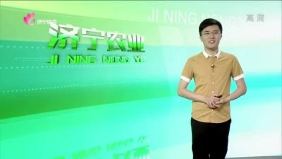 济宁农业 — 20190625