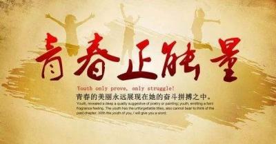 """曲阜举行""""凝聚青春正能量·携手共创文明城""""青联委员座谈会"""