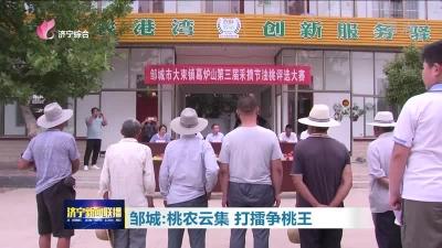 邹城:桃农云集 打擂争桃王