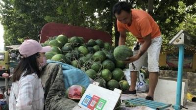 """""""1元瓜""""一天能卖4000多斤 今年济宁人""""吃瓜""""或比往年贵"""