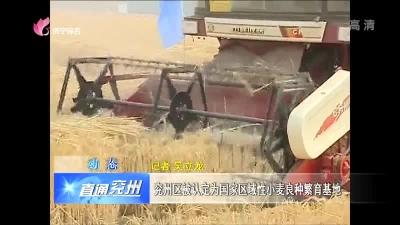 兖州区被认定为国家区域性小麦良种繁育基地