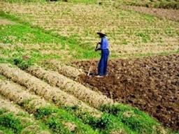 气象部门:今年山东降雨持续偏少,旱涝并存可能性较大