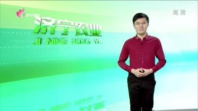 济宁农业 — 20190621