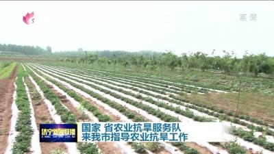 國家、省農業抗旱服務隊來我市指導農業抗旱工作