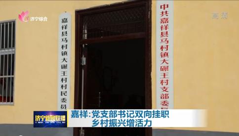 【领航】嘉祥:党支部书记双向挂职  乡村振兴增活力