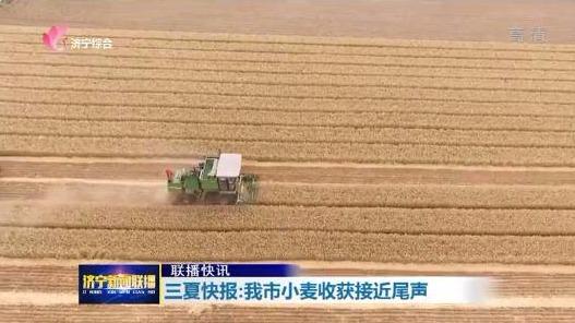 三夏快报:我市小麦收获接近尾声