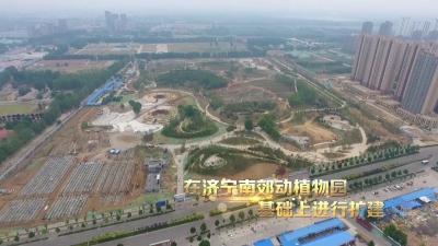 """定了!济宁市儿童公园""""十一""""开放!"""