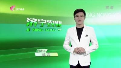 济宁农业 — 20190719