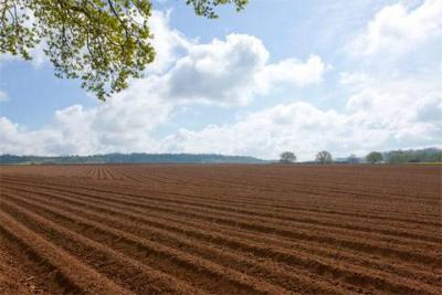 邹城等6个县市区因违法占用耕地被约谈