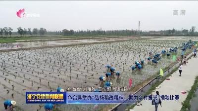 """魚臺縣舉辦""""弘揚稻改精神、助力鄉村振興""""插秧比賽"""