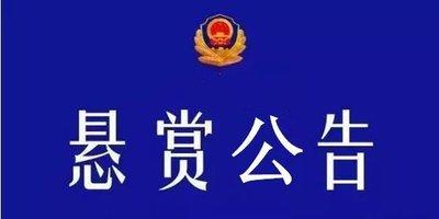 懸賞公告|泗水公開通緝4個涉案在逃嫌疑人