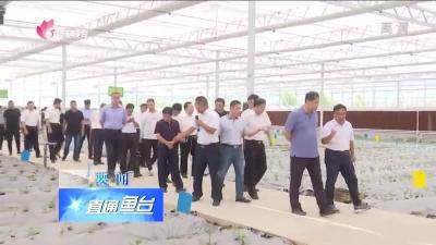 鱼台县开展镇驻地提升改造和扶贫产业项目现场观摩