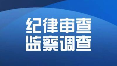 济宁市任城区委副书记、区长刘宜星接受纪律审查和监察调查