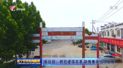 鱼台县:抓党建强双基 助推集体经济发展