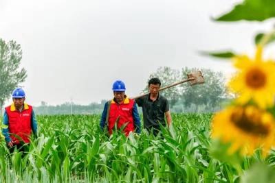 """流汗抗旱保供電    """"及時雨""""潤了村民心"""