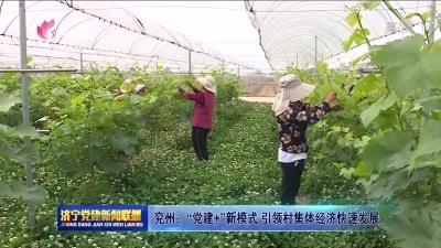 """兖州:""""党建+""""新模式 引领村集体经济快速发展"""