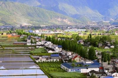 山东打造融入乡村的金融体系 乡村振兴有了金融活水