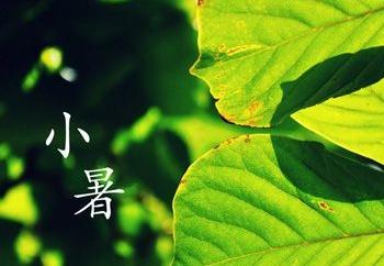 """小暑习俗知多少?民间流行""""食新""""、吃藕"""