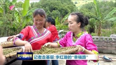 """茶叶搭起""""幸福路"""" 云南女孩李红珊与济宁有一段""""不解之缘"""""""