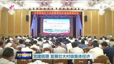 濟寧:加快組織和人才振興 發展壯大村級集體經濟