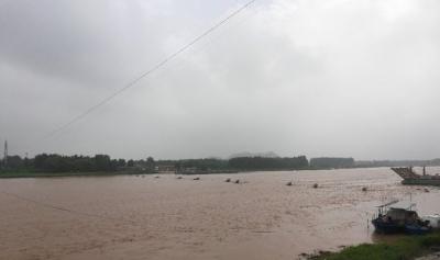 梁山黃河河務局水情發布,小浪底壩上水位219.94米