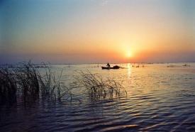 《微山湖上静悄悄》