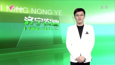 济宁农业 — 20190813