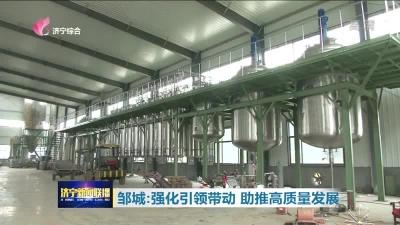 大干三季度|邹城:强化引领带动 助推高质量发展