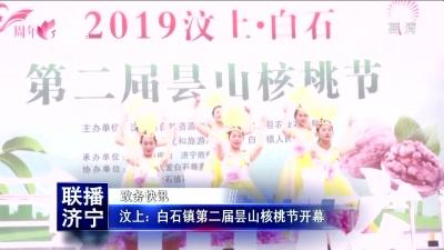 汶上:白石鎮第二屆曇山核桃節開幕
