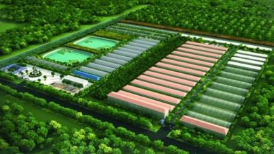 邹城上榜省级农村产业融合发展示范园创建名单