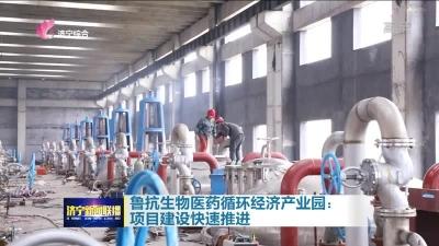 大干三季度|魯抗生物醫藥循環經濟產業園:項目建設快速推進