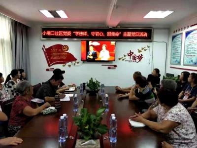 阜橋街道小閘口社區黨委舉辦主題黨日活動