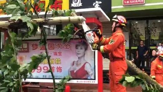 台风期间大树接连刮倒 微山消防紧急救援