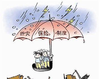 """中国人寿积极应对台风""""利奇马"""""""