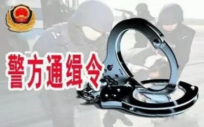 悬赏通告|征集违法犯罪线索 最高奖励2万