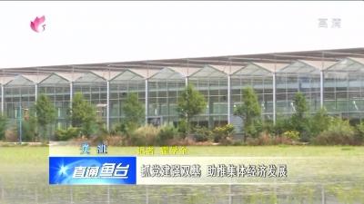 鱼台:抓党建强双基  助推集体经济极速快3