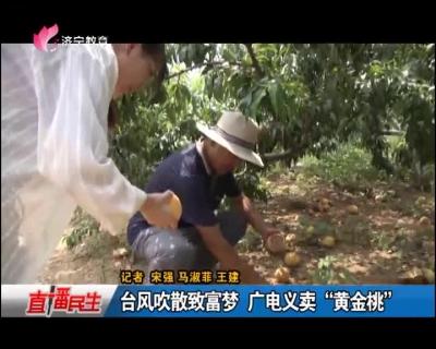 """台风吹散致富梦 广电义卖""""黄金桃"""""""