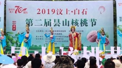 汶上白石第二届昙山核桃节开幕