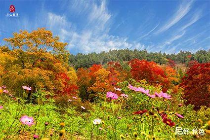 """""""尼""""好,秋天!?那一座山,那一片星空, 那一抹秋色"""