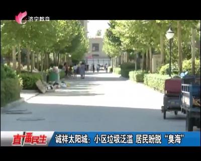 """诚祥太阳城:小区垃圾泛滥 居民盼脱""""臭海"""""""