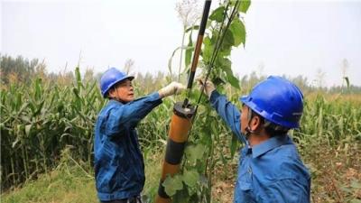 梁山供电公司巡视10千伏包那里线 确保中秋节供电可靠性