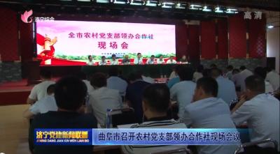 曲阜市召开农村党支部领办合作社现场会议