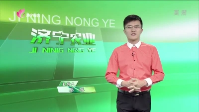 济宁农业 — 20190903