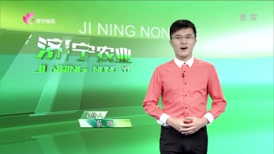 济宁农业 — 20190830