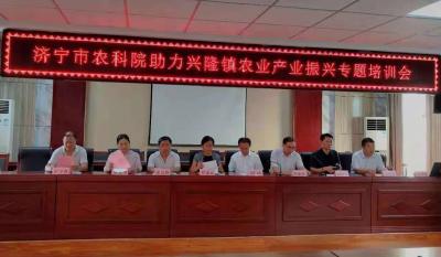 济宁农科院科技服务兴隆镇 助力乡村产业振兴