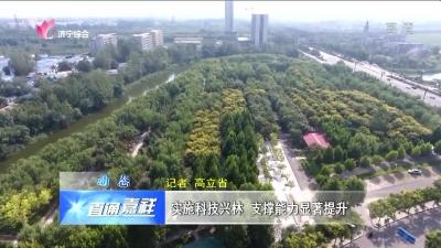 嘉祥:实施科技兴林 支撑能力显着提升