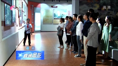 """金乡:争当""""红领巾宣讲员""""  传承红色文化"""