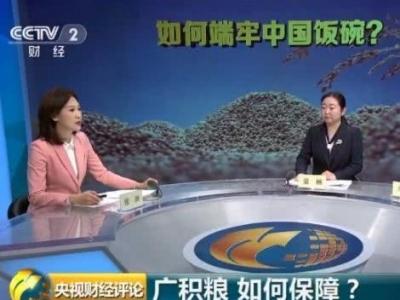 时隔23年,中国再次发表粮食白皮书!释放哪些新信号?