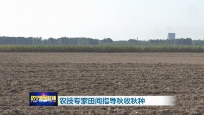 农技专家田间指导秋收秋种