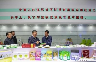 關于中國飯碗,習近平這樣說